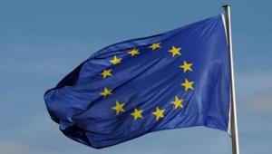 EU flag Photo: Shutterstock
