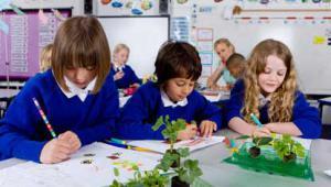 PrimaryschoolkidsISTOCK