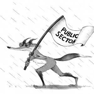 Public sector fox