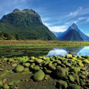 New Zealand, Photo: Shutterstock
