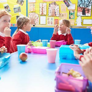 School meals - primary school children