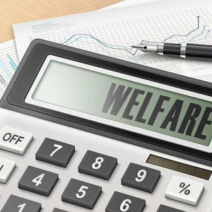 Welfare costs
